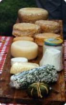 fromages-de-chevre-2