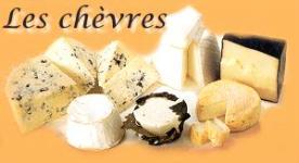 fromages-de-chevres-1